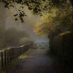 The use of light and shadow in this photograph creates an atmospheric scene. It was taken by Angela Wallace Wright on the Riverside Path in Grasmere Cumbria. Use and to share your pictures with us. England Countryside, Cumbria, Autumnal, Big Picture, Light And Shadow, Travel Around, Paths, Britain, Traveling By Yourself