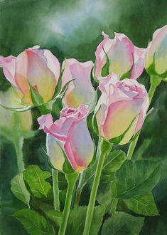 Rose Array Watercolor--artist Sharon Freeman