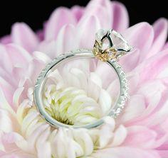Lotus Diamond Engagement Ring by WFDiamonds, via Flickr