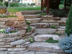 I would be happy to see this wall in our yard. I am especially interested in the plants that are growing out of nooks in the wall.  They don't have to be flowers.