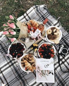 As long as it is a spot with a gorgeous view and minimal distractions around, it will be the perfect picnic. Picnic Date, Brunch, Picnic Style, Romantic Picnics, Romantic Dinners, Carne Asada, Aesthetic Food, Food Photography, Good Food