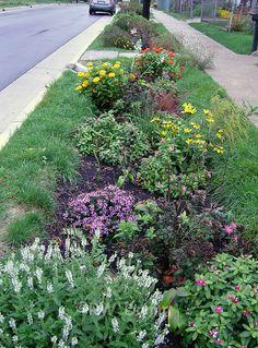 rain gardens Pesquisa Google urbano Pinterest Garden ideas