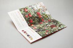 果實果铺 品牌设计 - 薄荷品牌