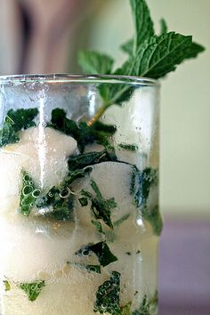 Champagne cocktails with mint & lemon sorbet