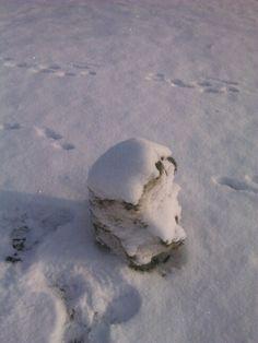 Toto je týden starý sněhulák...