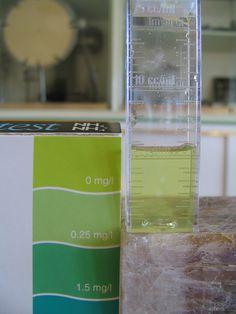 Alla ricerca di ammoniaca e ione ammonio con i test per gli acquari