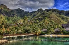French Polynesia ... luxury lifestyles, Twitter