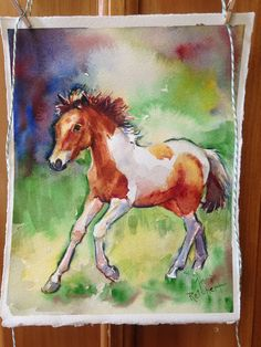 Misty, watercolor painting of wild horse on Chincoteague Island, Virginia - Marias Chincoteague Island, Chincoteague Ponies, Watercolor Paintings, Watercolour, Horse Photos, Horse Art, Wild Horses, Animal Paintings, Art Day
