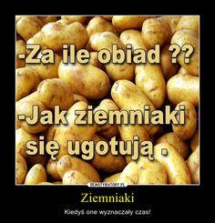 Ziemniaki – Kiedyś one wyznaczały czas! Very Funny Memes, Wtf Funny, Polish Memes, Everything And Nothing, Life Humor, Itachi, Best Memes, Funny Photos, Haha