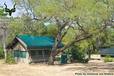 KNP - Skukuza - Accommodation - Tents