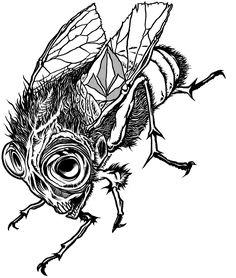 Matt French - Stone fly