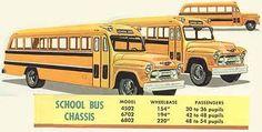 1955 School Buses
