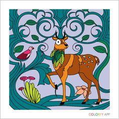 Colorfy deer