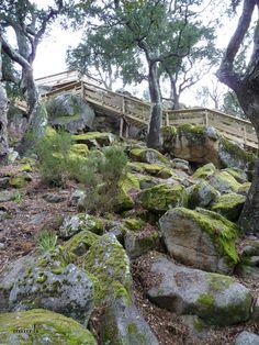 Passadiços do Paiva - stairs