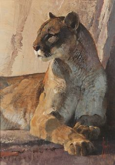 Bob Kuhn - Study of a Cougar 16 x 12 Acrylic on masonite (sold for $103,500 US)