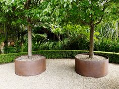 in pots, Outdoor Landscaping, Front Yard Landscaping, Small Gardens, Outdoor Gardens, No Grass Yard, Art Vert, Modern Outdoor Living, Pyrus, Raised Planter