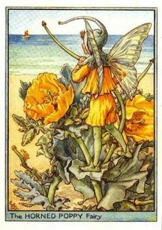 Horned Poppy Flower Fairy Vintage Print by Cicely Mary Barker, first published in London by Blackie, 1948 in Flower Fairies of the Wayside.