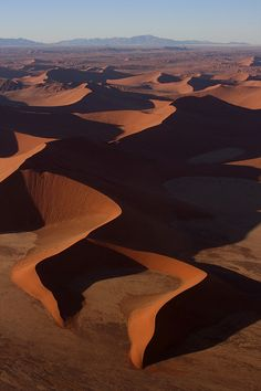Sand Dunes of the Namib
