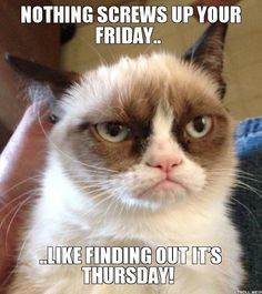 nothing-screws-up-your-friday-like-finding-out-its-thursday.jpg (JPEG Image, 551 × 621 pixels)