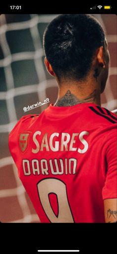 Benfica Wallpaper, Darwin, Bae, Wallpapers, Sports, T Shirt, Women, Club, Soccer