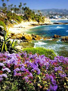 Laguna beach,California.