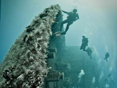 Zenobia, a Swedish ferry, which sank off the coast of Cyprus in 1980 by Arthur Martin