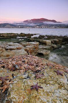 "Tasmania, Australia - ""Starfish Dawn"" by andrewfuller62, via Flickr"