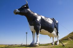 This is Salem Sue, the world's largest Holstein Cow statue. North Dakota's Enchanted Highway boasts some of the world's most fascinating and largest sculptures, some made out of scrap metal. A wonderful summertime driving trip to make to explore America's heartland.