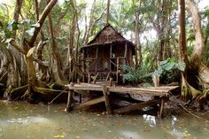 Tia Dalma's Shack from Pirates of the Caribbean 2 on The Indian River, Dominica   SBPR