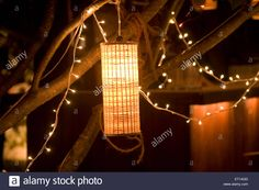 Artificial Outdoor Hanging lights and small bulbs for decoration of the party Outdoor Hanging Lights, Bulbs, Chandelier, Ceiling Lights, Stock Photos, Decoration, Party, Home Decor, Lightbulbs