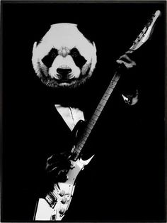 ROCK PANDA Cool Panda, Panda Love, Panda Kawaii, Panda Drawing, Panda Wallpapers, Leopard Cub, Black White Art, Pet Portraits, Animals And Pets