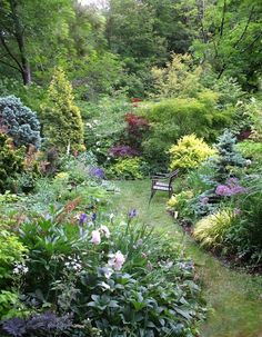A quiet space -- which works even though there are lots of different plants. - A quiet space — which works even though there are lots of different plants…. Small Gardens, Outdoor Gardens, Amazing Gardens, Beautiful Gardens, Cottage Garden Design, The Secret Garden, Different Plants, Dream Garden, Garden Path