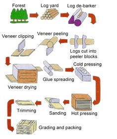 Plywood - How it is made of