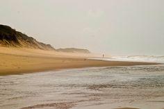 chongoene ghost hotel mozambique - Yahoo Image Search Results Yahoo Images, Image Search, Beach, Water, Outdoor, Gripe Water, Outdoors, The Beach, Beaches