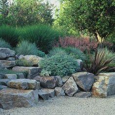 Dry garden foliage combo