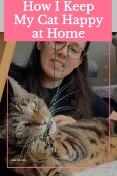 Want to make your cat happy at home? Check out this playlist! This is everything I do for my cat Jericho. Jericho used to live on the street, but now he's happy and entertained daily indoors. See how to make raw cat food at home easily, how to get your cat to play, fun enrichment ideas, and more all in this playlist! Check it out today for ultimate cat happiness! Training A Kitten, Ikea Cat, Healthy Cat Food, Cat Behavior Problems, First Time Cat Owner, How To Cat, Cat Products, Human Babies, Cat Care Tips