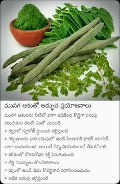 Health Facts, Health Diet, Health Care, Health Fitness, Health Remedies, Home Remedies, Natural Remedies, Good Health Tips, Natural Health Tips