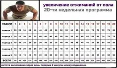 Программа отжиманий Bodybuilding Workouts, Natural Medicine, Physical Fitness, Hiit, At Home Workouts, Health, Fitness Exercises, Crossfit, Google