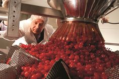 Dell's Maraschino Cherries Owner Commits Suicide When Secret Grow Discovered | Weedist