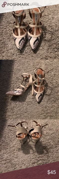 Steve Madden Heels Snake print pointed heels Steve Madden Shoes Heels