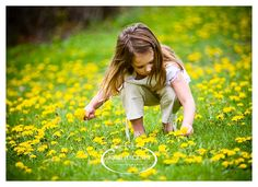 Dandelion Days: Like dandelion seeds, we can plant faith in our children's hearts …
