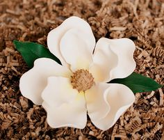 Southern Magnolia tutorial-  - SugarEd Productions