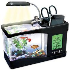 The Non Virtual USB Aquarium - Hammacher Schlemmer