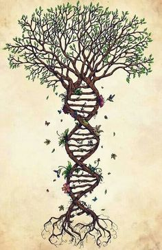 Nature and human beings are one. We all are made up of Earth
