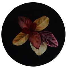 Leaf Study, Oil on Canvas, 50cm Diameter, 2013 www.artfortwilliam.co.uk