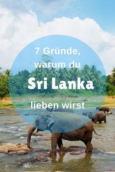 Baby-Elefanten, Bilderbuchstrände, grüne Teeplantagen und bunte Tempelanlagen. Wir lieben Sri Lanka! Sri Lanka ist einer der schönsten Inselstaaten weltweit. Ich habe in Sri Lanka mit Kind einen sehr spannenden aber auch entspannten Urlaub verbracht und sehr viel gesehen und unternommen. Du warst noch nicht in Sri Lanka? Dann ist dieser Beitrag genau das Richtige für dich. Ich verrate dir 7 Gründe, warum auch du Sri Lanka lieben wirst.