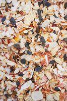 Seashells add a sense of realism to a nautical decor.