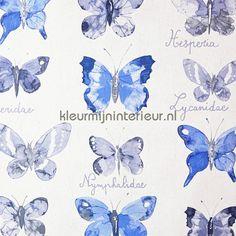 Vlinder flora CRY 6547 6019 | behang Curiosity van Caselio | kleurmijninterieur.nl
