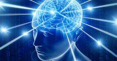 Jezte tyto zdravé tuky: Zlepší se vám paměť a inteligence Fatigue Causes, Chronic Fatigue Syndrome Diet, Chronic Fatigue Symptoms, Chronic Pain, Chronic Illness, Asmr, What Causes Fibromyalgia, Substantia Nigra, Different Types Of Meditation