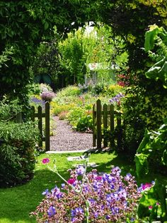 Mick and Ann Potter's garden at Penny Piece Cottages in Kirkbymoorside in Yorkshire